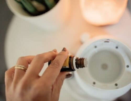 Loja de aromatizadores – Onde comprar? Quais os melhores?