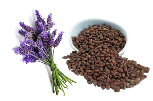lavanda e semente de uva