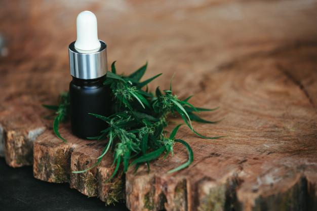 como usar óleo essencial de melaleuca