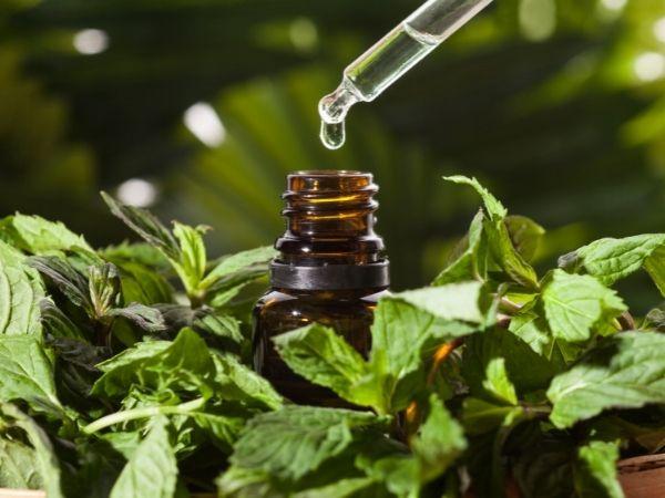 perguntas e respostas sobre óleos essenciais